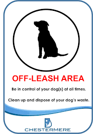 off-leash